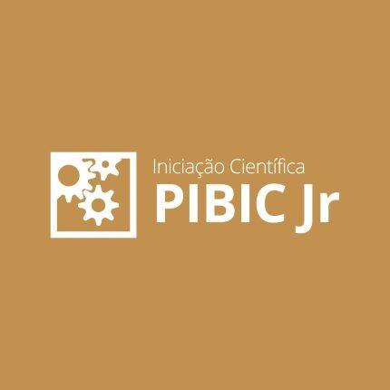 PIBIC Jr