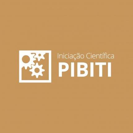 PIBITI