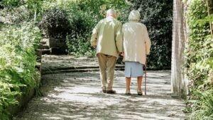 saúde do idoso pucpr